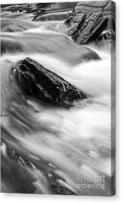 True's Brook Gorge Water Fall Canvas Print by Edward Fielding