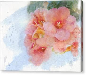 Trumpet Flowers #4 Canvas Print by Betty LaRue