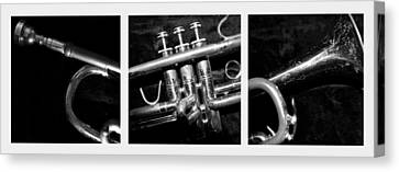 Trumpet Triptych Canvas Print