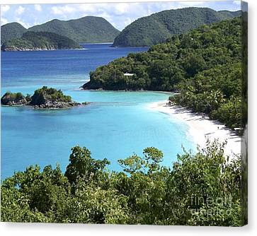 Canvas Print featuring the photograph Trunk Bay II by Carol  Bradley