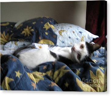 Tuck Me In Canvas Print by Wendy Coulson
