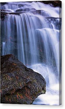 Pine Needles Canvas Print - Tucker Brook Falls With Boulder. by Jeff Sinon