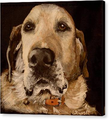 Tucker Canvas Print