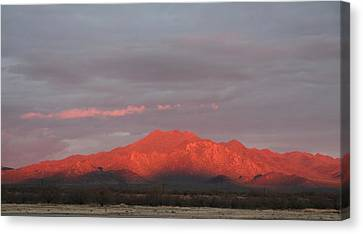 Canvas Print featuring the photograph Tucson Mountains by David S Reynolds