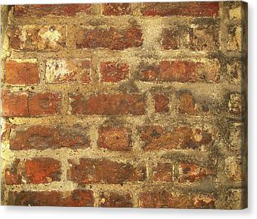 Historic Architecture Canvas Print - Tudor Brickwork by Cordelia Molloy