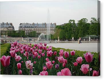 Canvas Print featuring the photograph Tuileries Garden In Bloom by Jennifer Ancker