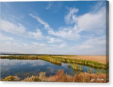Canvas Print featuring the photograph Tule Lake Marshland by Jeff Goulden