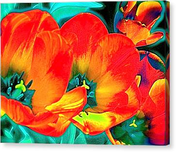 Canvas Print featuring the photograph Tulip 1 by Pamela Cooper