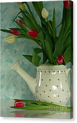 Tulip Bouquet In Watering Can Canvas Print by Inspired Nature Photography Fine Art Photography
