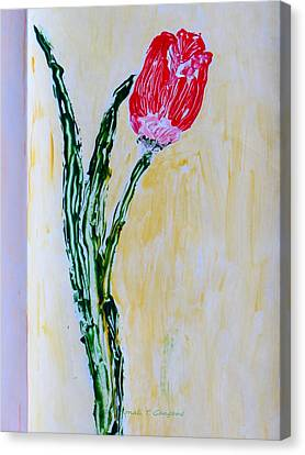 Tulip For You Canvas Print by Sonali Gangane