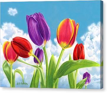 Tulip Garden Canvas Print by Sarah Batalka