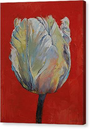 Tulip Canvas Print by Michael Creese