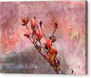 Tulip Tree Budding Canvas Print by J Larry Walker