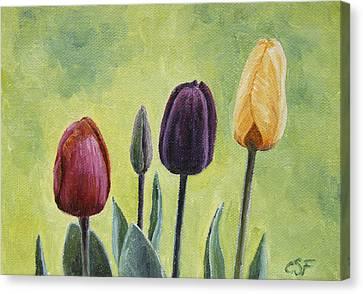Tulip Trio Canvas Print by Crista Forest