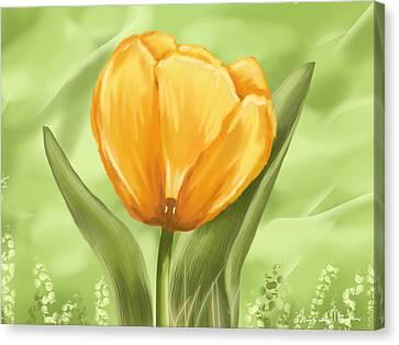 Tulip Canvas Print by Veronica Minozzi
