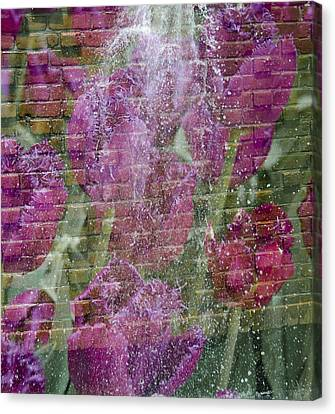 Tulip Waterfalls Canvas Print by Penny Lisowski