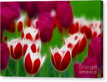 Tulips-6848-fractal Canvas Print by Gary Gingrich Galleries