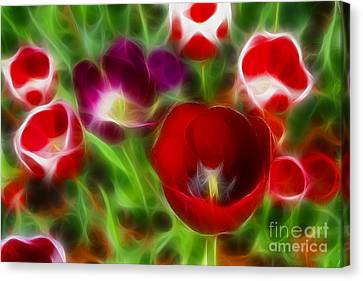 Tulips-6967-fractal Canvas Print by Gary Gingrich Galleries