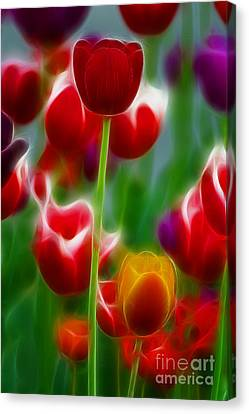 Tulips-7069-fractal Canvas Print by Gary Gingrich Galleries