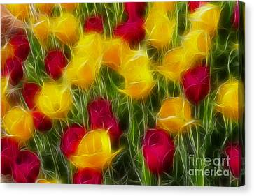 Tulips-7106-fractal Canvas Print by Gary Gingrich Galleries