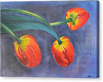 Tulips Canvas Print by Adel Nemeth