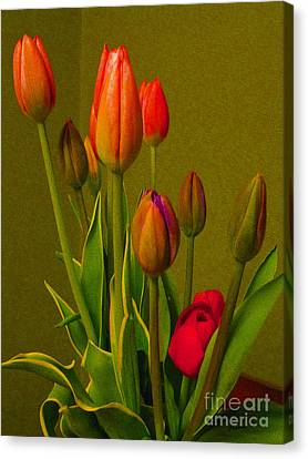 Tulips Against Green Canvas Print by Nina Silver