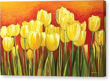 Tulips Canvas Print by Ahmed Amir