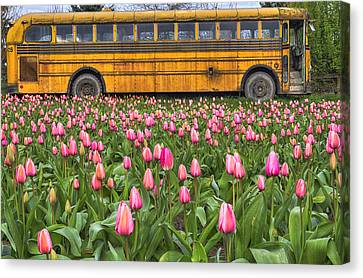School Bus Canvas Print - Tulips And Old Bus by Mark Kiver