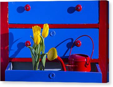 Tulips And Watering Can  Canvas Print by Garry Gay