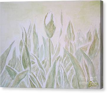 Tulips Canvas Print by Blg H