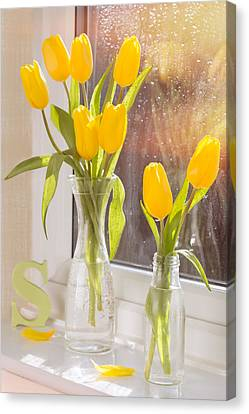 Glass Bottle Canvas Print - Tulips by Amanda Elwell