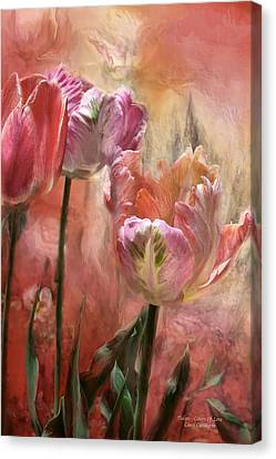 Tulips - Colors Of Love Canvas Print by Carol Cavalaris