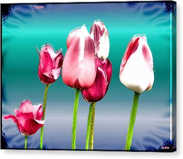 Canvas Print featuring the digital art Tulips by Daniel Janda