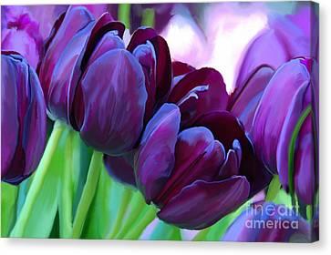 Tulips-dark-purple Canvas Print