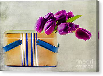 Tulips For Mom Canvas Print by Darren Fisher