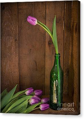 Tulips Green Bottle Canvas Print by Alana Ranney