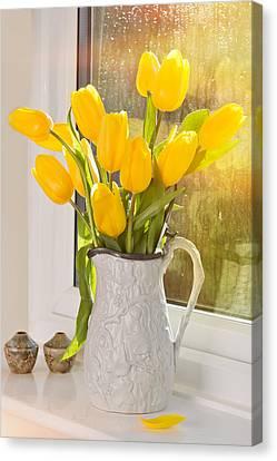 Tulips In Antique Jug Canvas Print by Amanda Elwell