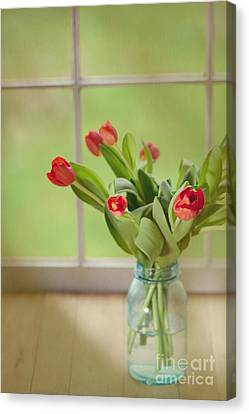 Tulips In Mason Jar Canvas Print by Kay Pickens