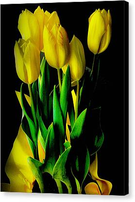 Canvas Print featuring the photograph Tulips by Joseph Hollingsworth