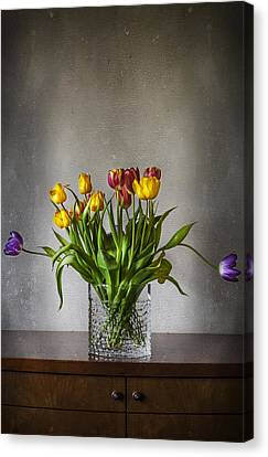 Tulips Canvas Print by Svetlana Sewell