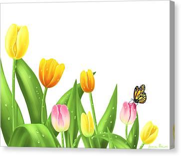Tulips Canvas Print by Veronica Minozzi