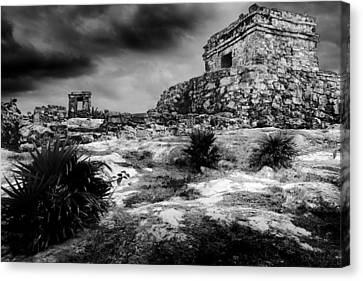 Tulum Ruin Canvas Print by Julian Cook