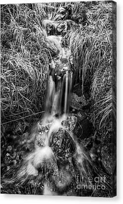 Tumbling Water Canvas Print by John Farnan