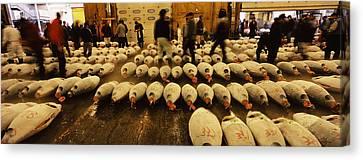 Tuna Auction At A Fish Market, Tsukiji Canvas Print