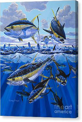 Fish Canvas Print - Tuna Rampage Off0018 by Carey Chen