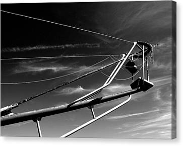 Tuna Stand Canvas Print by Donnie Freeman