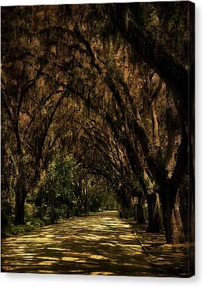 Tunnel   Canvas Print by Mario Celzner