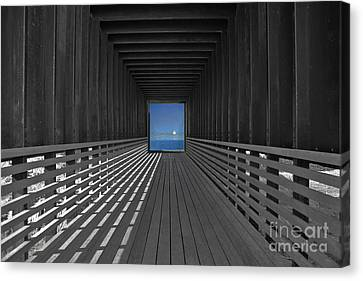 Tunnel Vision Canvas Print by Lynne Sutherland