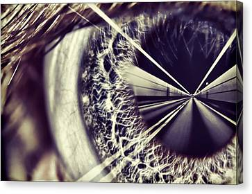 Tunnel Vision Canvas Print by EXparte SE