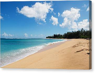 Tunnels Beach Canvas Print by Nastasia Cook